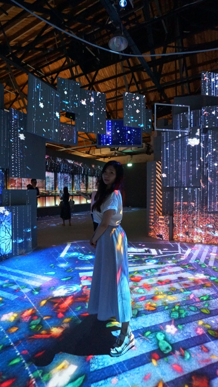 光影東京光雕展,涉谷區光雕
