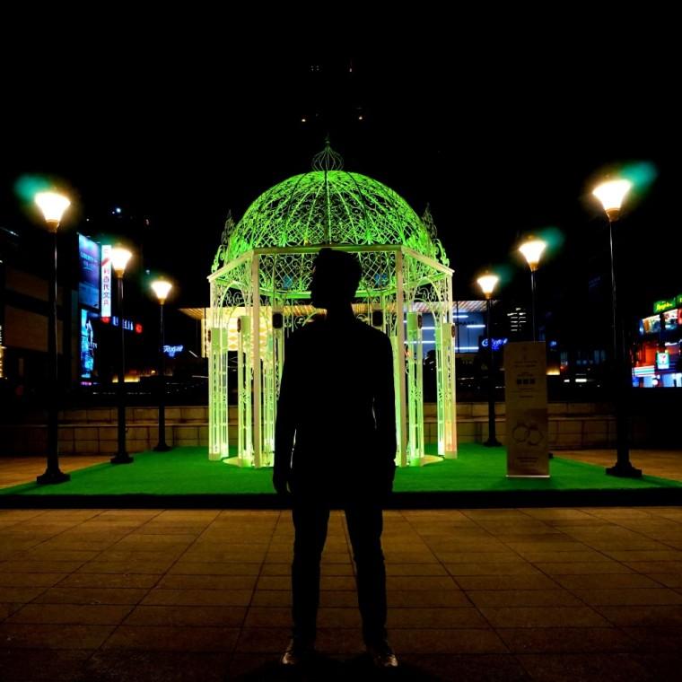 晶華酒店,Harry Winston,裝置藝術,剪影照